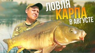 Ловля КАРПА в августе | Рыбалка 2020 | Рыбалка с НОЧЕВКОЙ
