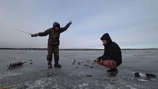 Ждем первый лед 2020 - 2021 Ловля щуки на жерлицы и окуня на балансир