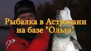 "Константин Кузьмин. Рыбалка в Астрахани на базе ""Ольга""."