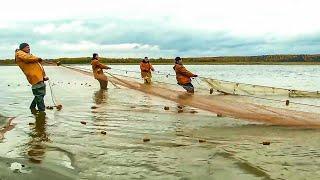 С полем! Лучшие выпуски: Рыбалка на удочку, сеть, невод | Крупная рыба, щука, таймень | Как ловить?