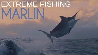 Марлин утащил рыбака из лодки | Экстремальная рыбалка