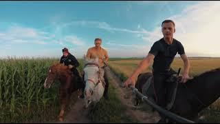 Полевой галоп на лошадях 360 5K | Horse gallop 360 5K