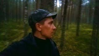 31 августа. Встречаю грозу в лесу. Рыбалка на Унже, щуки, окуни в коряжнике.