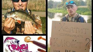 #Окунь #осень #crazyfish Осенняя рыбалка на Polaris от Сrazy fish на окуня! Приметы рыбака!