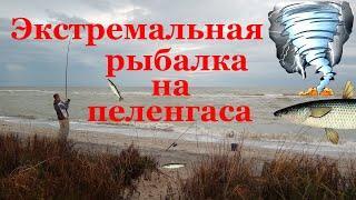 ЭКСТРЕМАЛЬНАЯ РЫБАЛКА на ПЕЛЕНГАСА в сентябре. Рыбная ловля в Азовском море. Морская рыбалка.