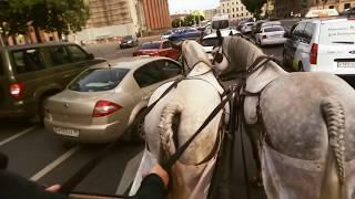Снятие стресса :-)Дворцовая площадь.Санкт-Петербург. Катание на лошадках)))!...04.07.2020