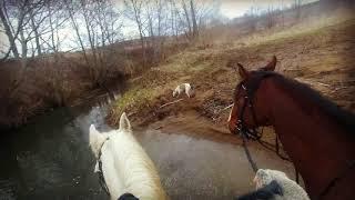 Верхом на лошади по лесам и рекам (Горномарийский район)
