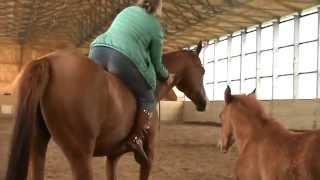 Я верхом на лошади