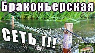 Браконьерские сети. Рыбалка в Ленинградской области. Июль 2020.