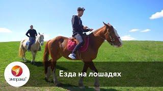 Езда на лошадях: верховая прогулка для истинных любителей природы и этих удивительных животных!