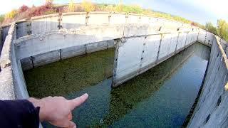 Лечение рыбы! Пруд на участке даче своими руками без плёнки для выращивания разведения рыбы.