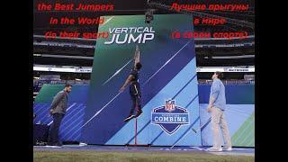 #Top 5 highest jumps in sport 2020. #Топ 5 самых высоких прыжков в спорте 2020