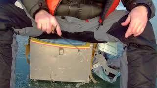 Зимняя Рыбалка на Окуня - Поклёвка || Perch Bite on Ice Fishing