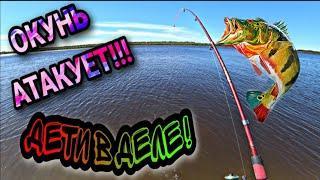 ОКУНЬ АТАКУЕТ!!! ДЕТИ В ДЕЛЕ! рыбалка на окуней 2020