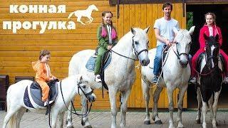 Конная Прогулка. Катание на Лошадях с Детьми