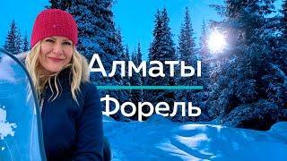 Экстремальная Рыбалка на Форель в горах Алматы - как ловить и приготовить форель? Ловля форели зимой