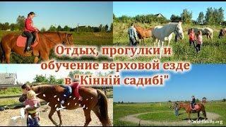 """Отдых, прогулки на лошадях и обучение верховой езде: о нашей поездке в """"Кінну садибу"""""""