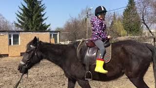 Верхом на лошади Прогулке. Задом на перед