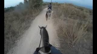 GoPro ride: альВард прогулка верхом второй раз 11 8 16