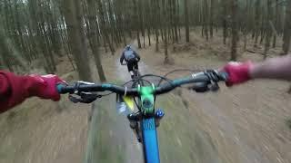 Mountain Bike  покатушки в лесу