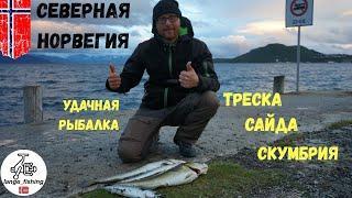 УДАЧНАЯ РЫБАЛКА НА СЕВЕРЕ НОРВЕГИИ. Рыбалка в Норвегии, город Харстад. ТРЕСКА, САЙДА, СКУМБРИЯ.