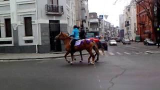 Прогулка верхом по городу на двух лошадях. Харьков