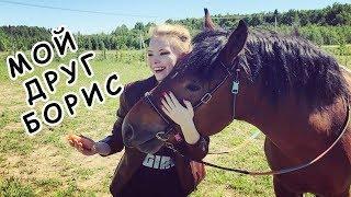 Каталась верхом на лошади мой Самый Лучший День!
