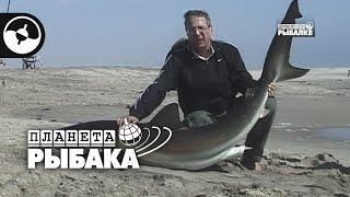 Акула весом в центнер. Рыбалка в Намибии | Планета рыбака