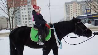Зимушка- зима. Зимняя прогулка верхом на лошади. Верховая езда на лошади.