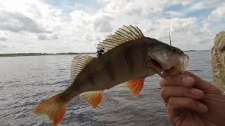 """Окунь на """"КОТЛАХ""""!!! Рыбалка на Рыбинском водохранилище. Открытие спиннингового сезона 2020. Часть 1"""