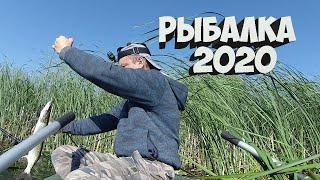Рыбалка на ЩУКУ в августе и сентябре 2020.Две рыбалки и одно ВИДЕО.