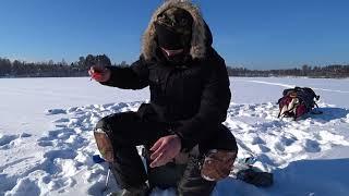 ЭкстрЕмальная рыбалка в -23 на озере Раздолинское (февраль 2018). Плотва, подлещик и АДСКИЙ ЕРШ.
