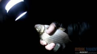 Карась начал клевать в сильный дождь. Экстремальная  рыбалка с зонтиком в руке и удочкой.