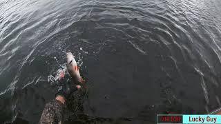 Экстремальная Рыбалка, Рыбалка на окуня в Сентябре