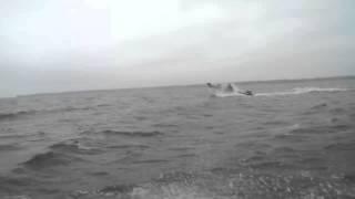 Экстремальная рыбалка на Днепре